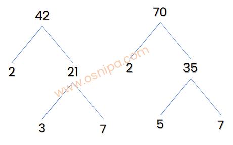 Pohon faktor 24 dan 70